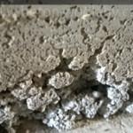Samonivelační betonová podlaha je cestou k úspěchu